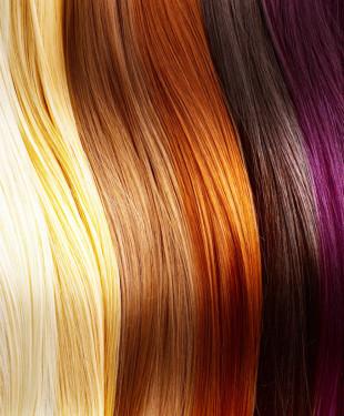 Hair Stylist - Cabelo -  Marco Toledo